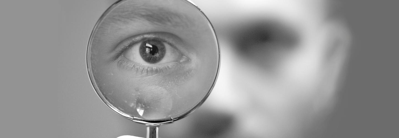 Magnifying glass. Credit: Bart van de Blezen.