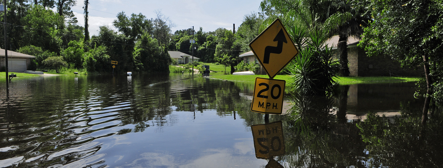 Florida neighborhood flooded after a tropical storm. Credit: FEMA/Barry Bahler.