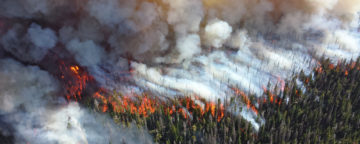 Forest fire in Yellowstone National Park. Credit: National Park Service/Mike Lewelling.