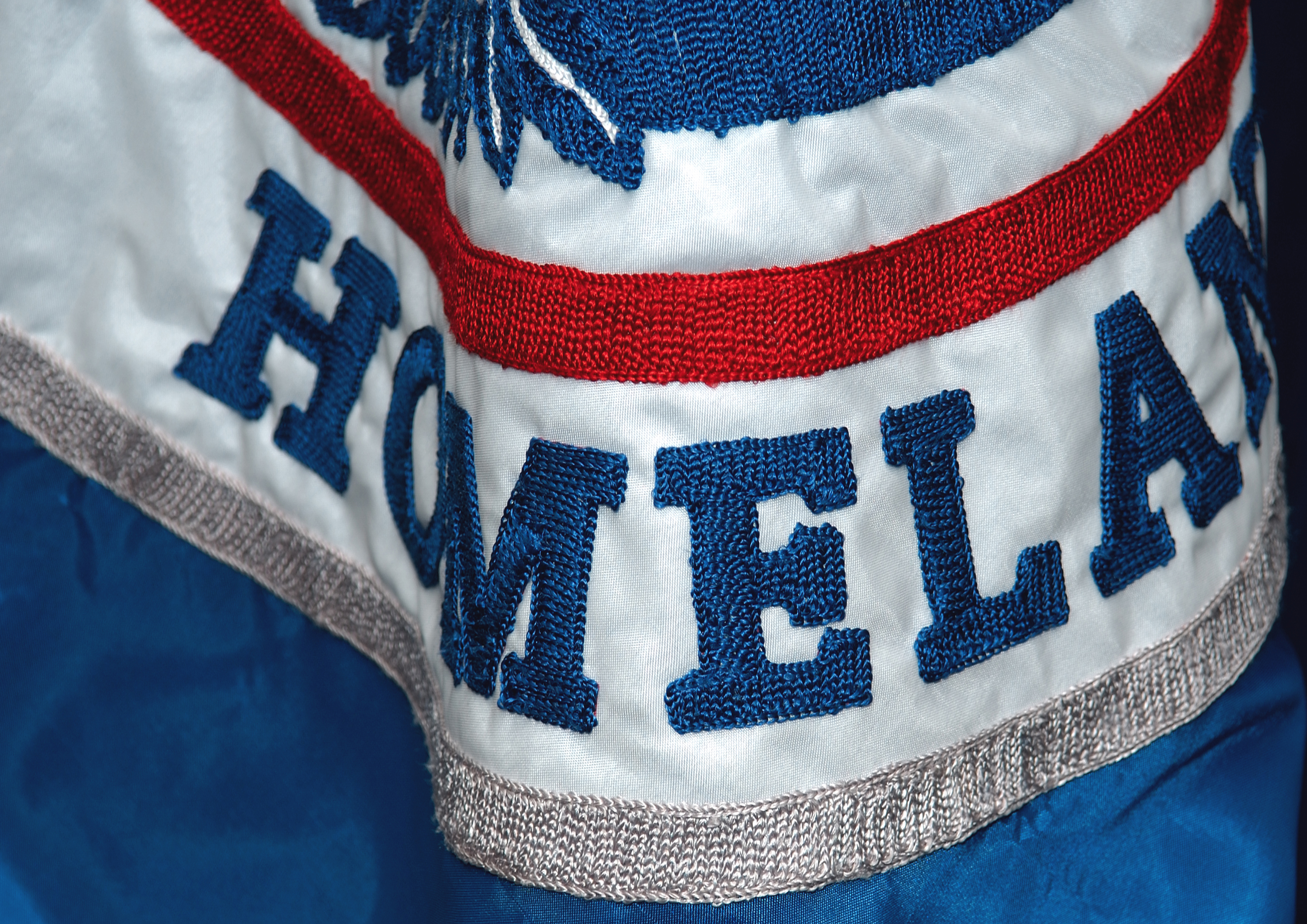 Detail of the Homeland Security Flag